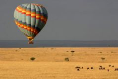 Balloon Safari in the Mara