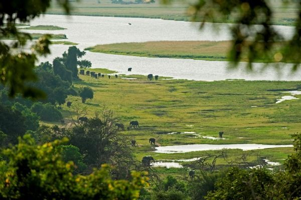 Greater Chobe National Park