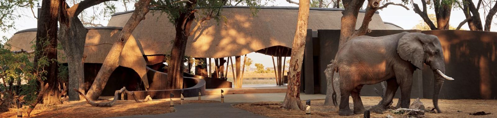 Belmond Safari