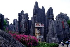Stone Forest Tour