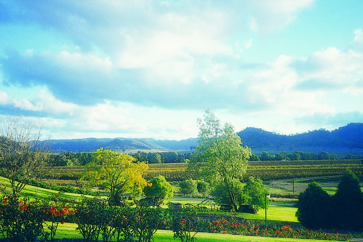 hunter valley from sydney - photo#20