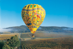 Yarra Valley Balloon and Wine Experience Tour