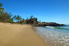 Tropical Queensland Experience