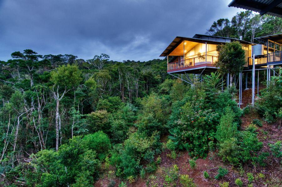 O Reilly S Rainforest Villas