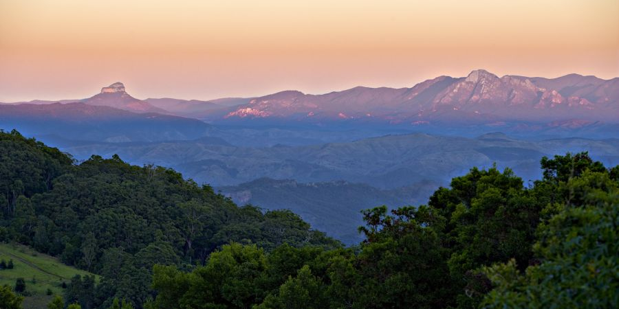 O Reilly S Rainforest Retreat And Mountain Villas