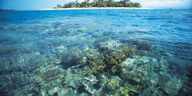 Low Isle Photo Credit: Tourism Queensland