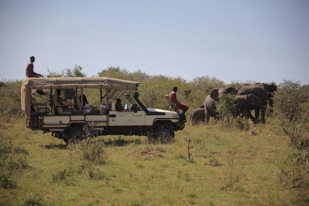 Mara Bushtops 2012-100.1