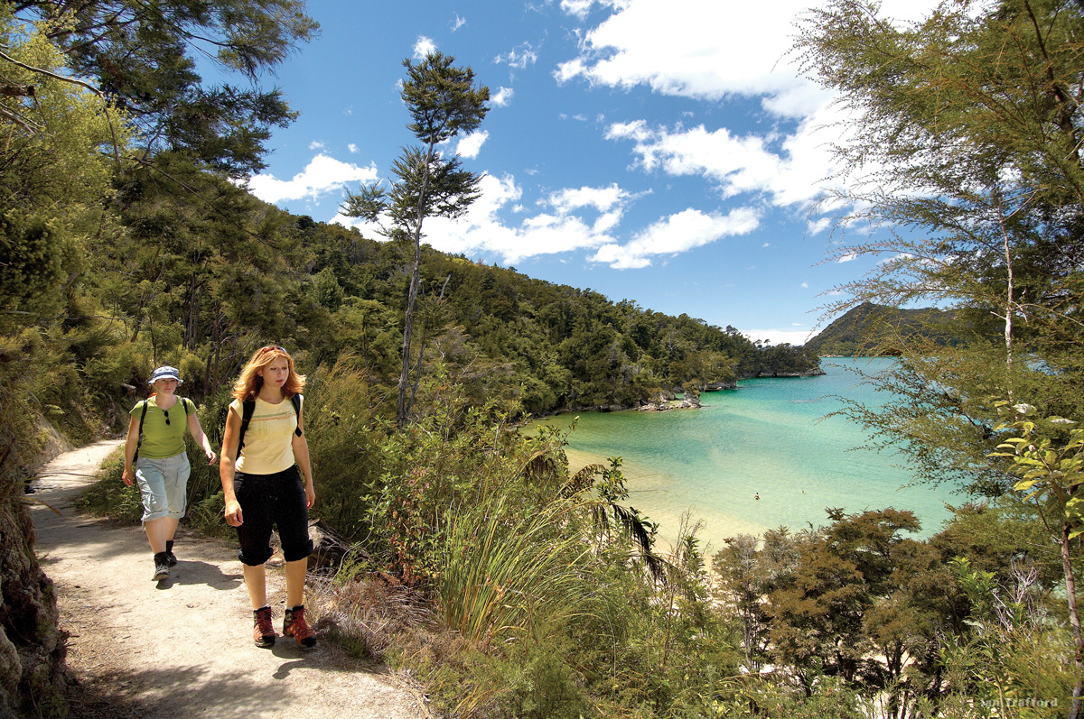 The abel tasman national park located in the top of the south island - The Top 10 Things To Do In New Zealand For A Little