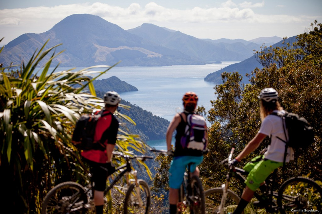 Mountain biking in the Queen Charlotte Track | Photo Credit: Tourism New Zealand