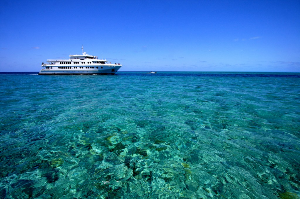 Coral Atoll Cruise | Photo Credit: North Star Cruises Australia