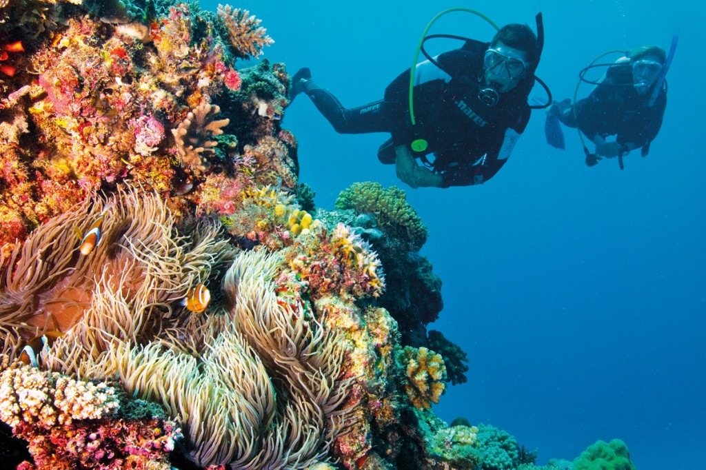 Great Barrier Reef | Photo Credit: Tourism and Events Queensland