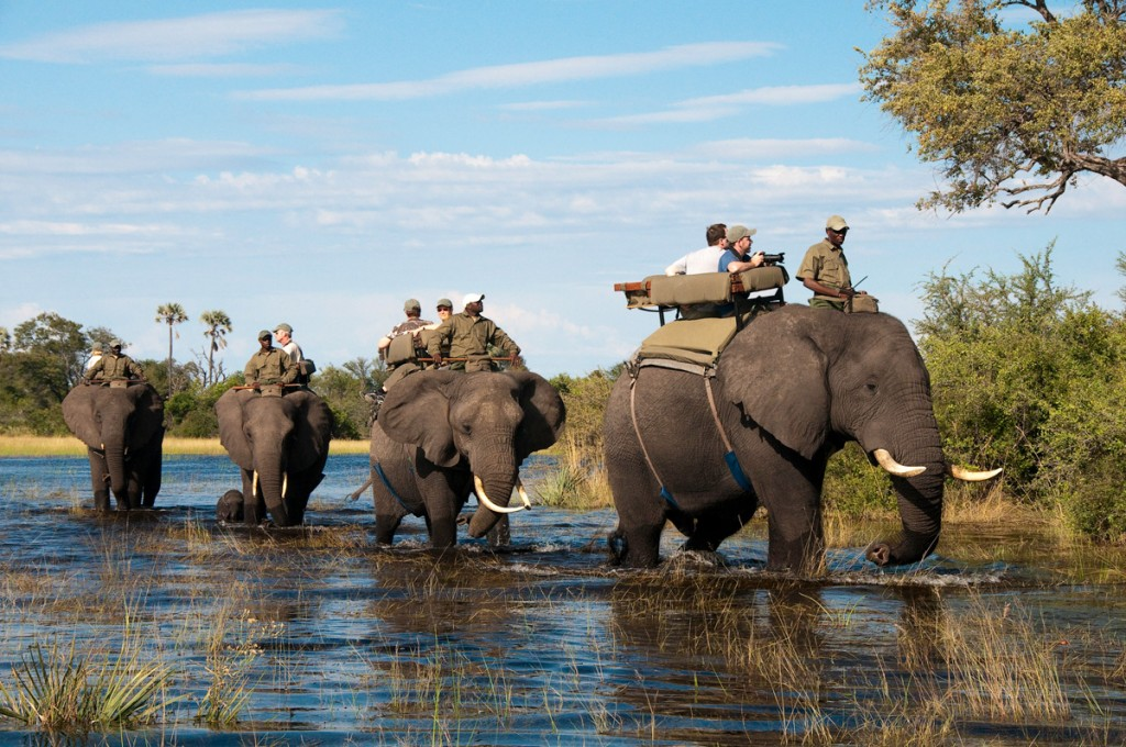 Elephant Back Safari | Photo Credit: Abu Camp