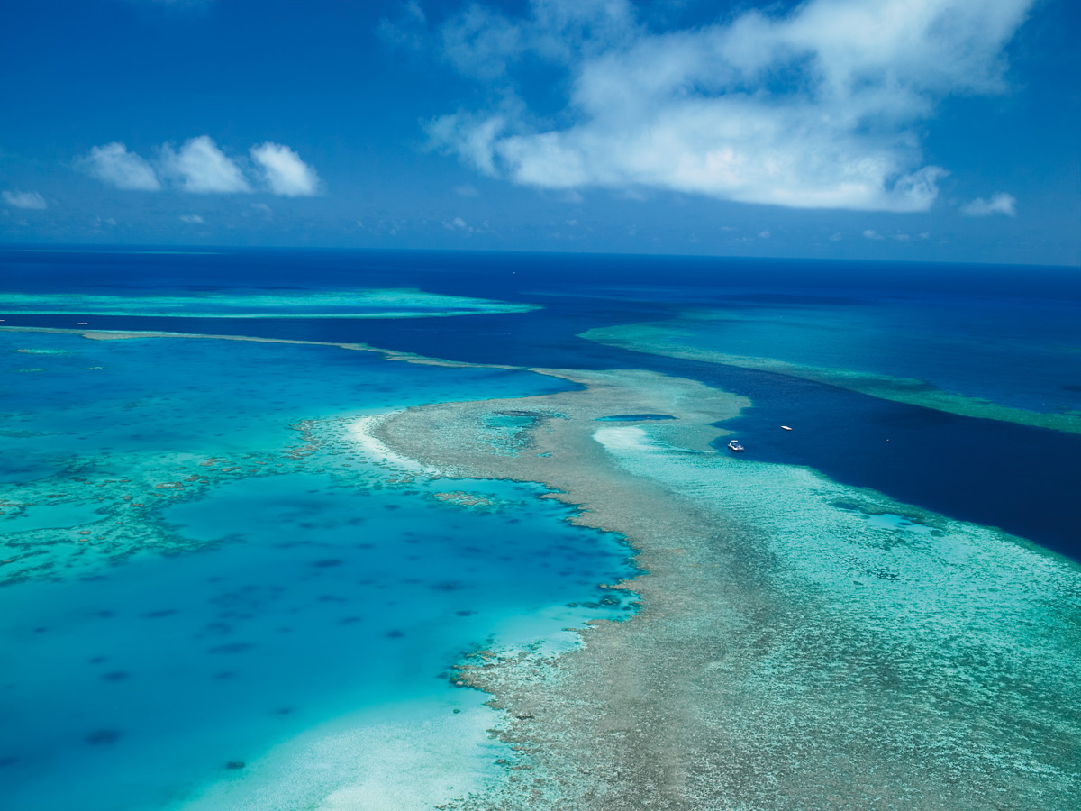 Aerial View of the Great Barrier Reef | Photo Credit: qualia