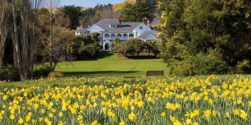 Photo: Otahuna Lodge overlooking the daffodil garden | Image Credit: Otahuna Lodge