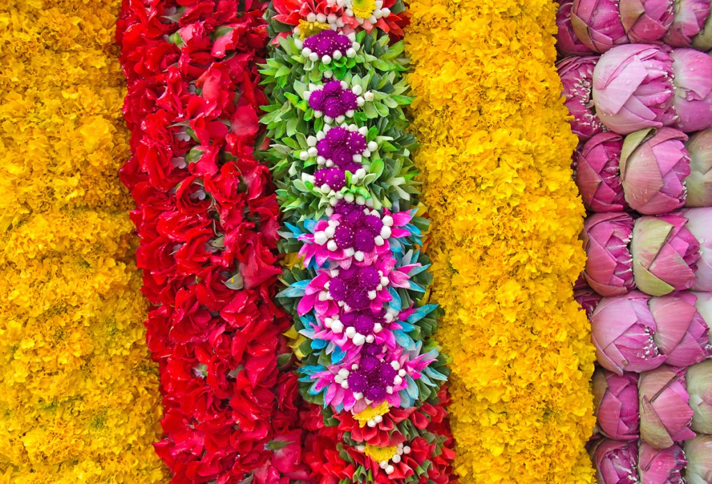 Flowers in India | Photo Credit: Shutterstock