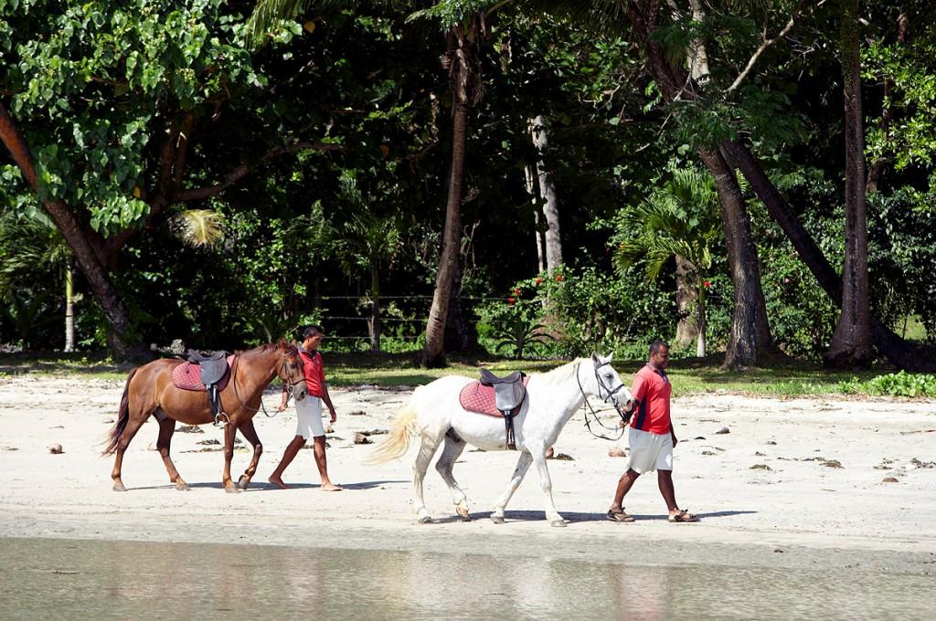 Horseback Riding | Photo Credit: Namale
