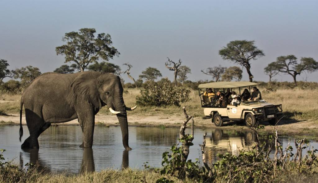 Game Drive | Photo Credit: Savute Elephant Camp