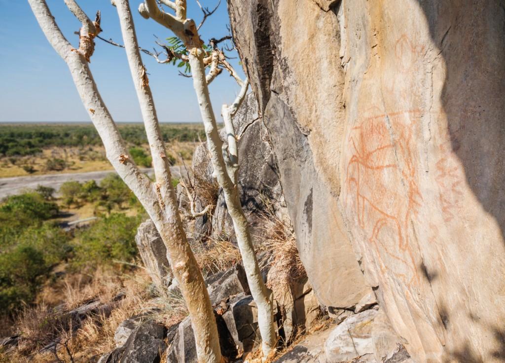 Exterior | Photo Credit: Savute Elephant Camp