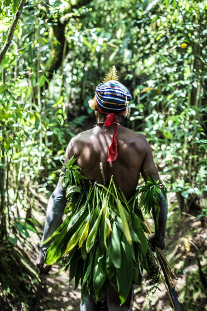 Into the Jungle Photo Credit: Swain Destinations