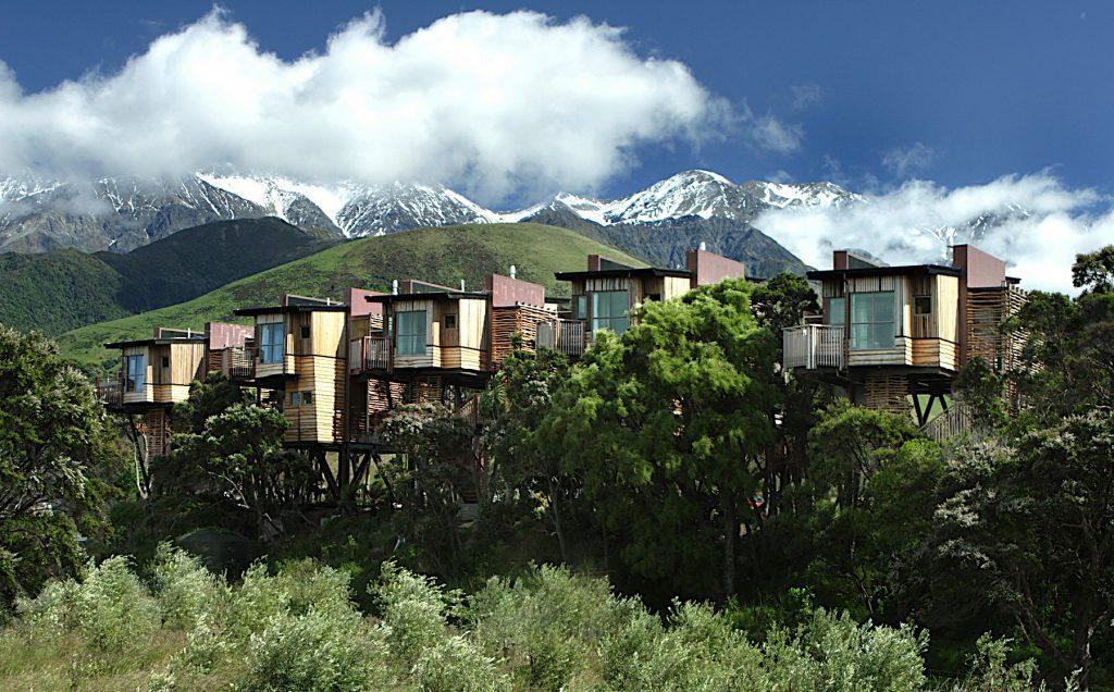 Hapuku Lodge Tree Houses