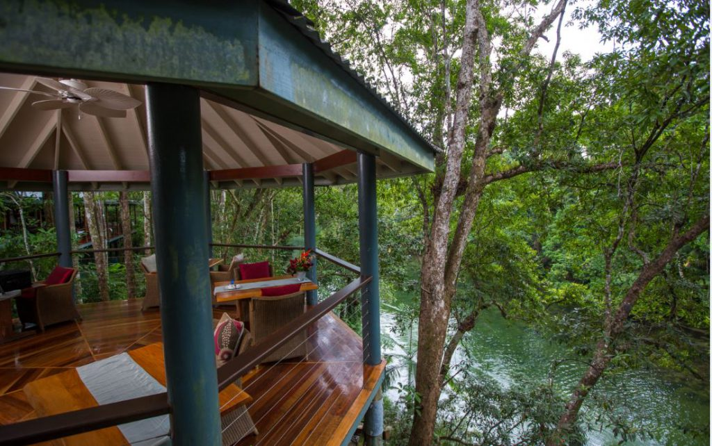 Jungle Perch   Photo Credit: Silky Oaks Lodge