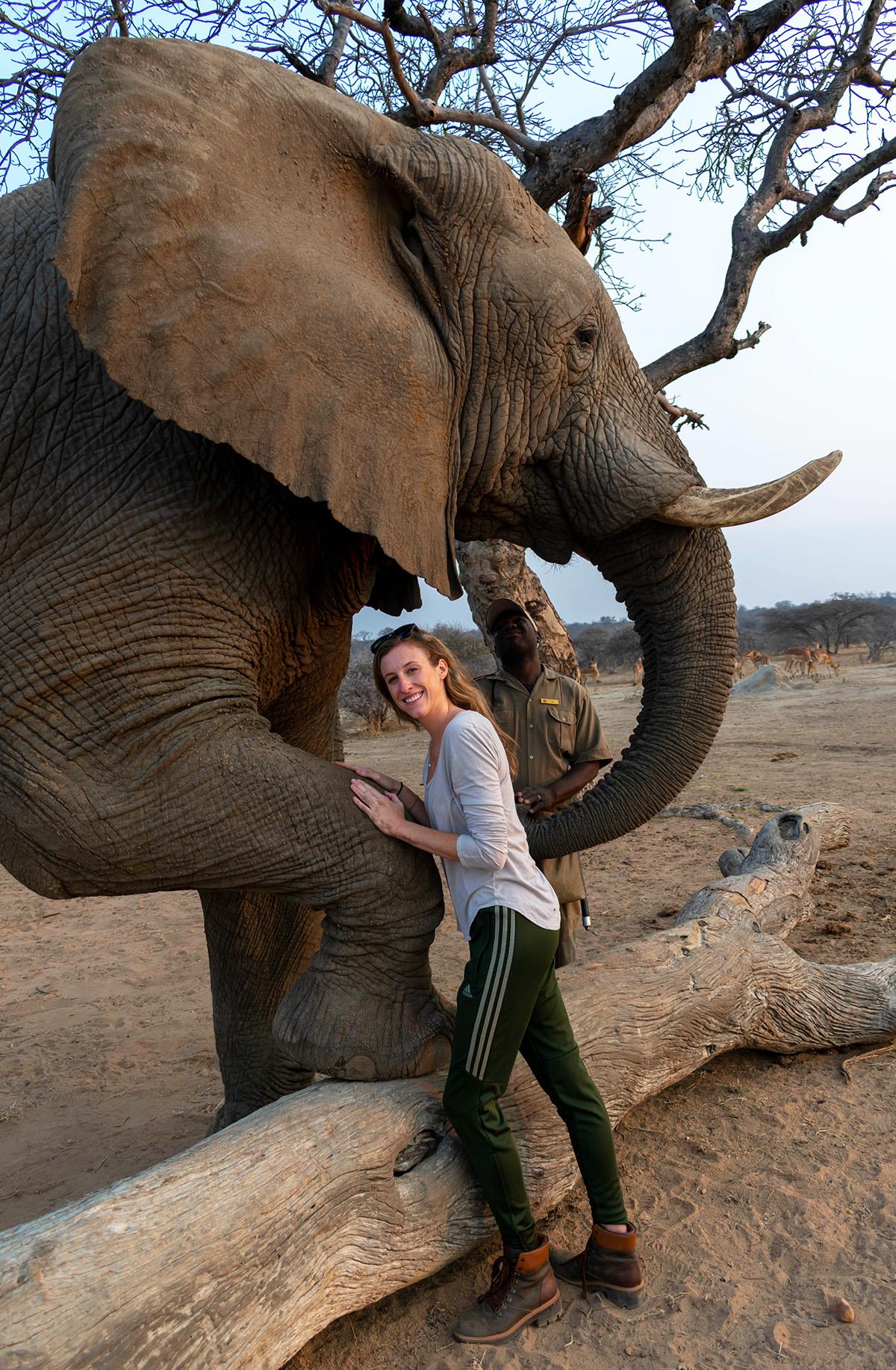 Elephant Encounter | Photo Credit: Kathryn Fischer