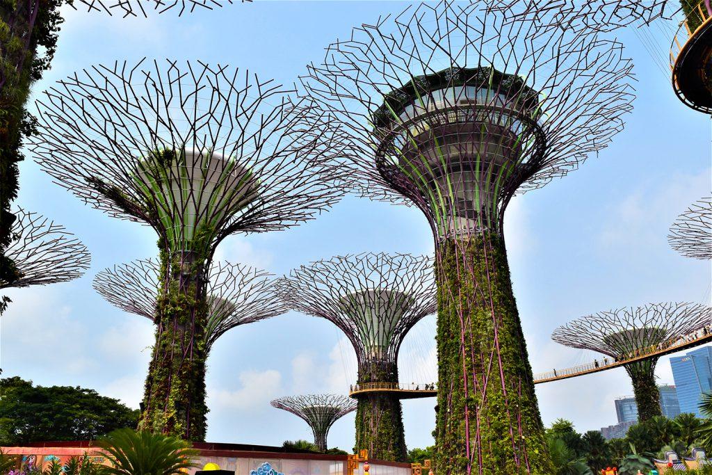 Gardens by the Bay, Singapore | Photo Credit: Donna Van Buren