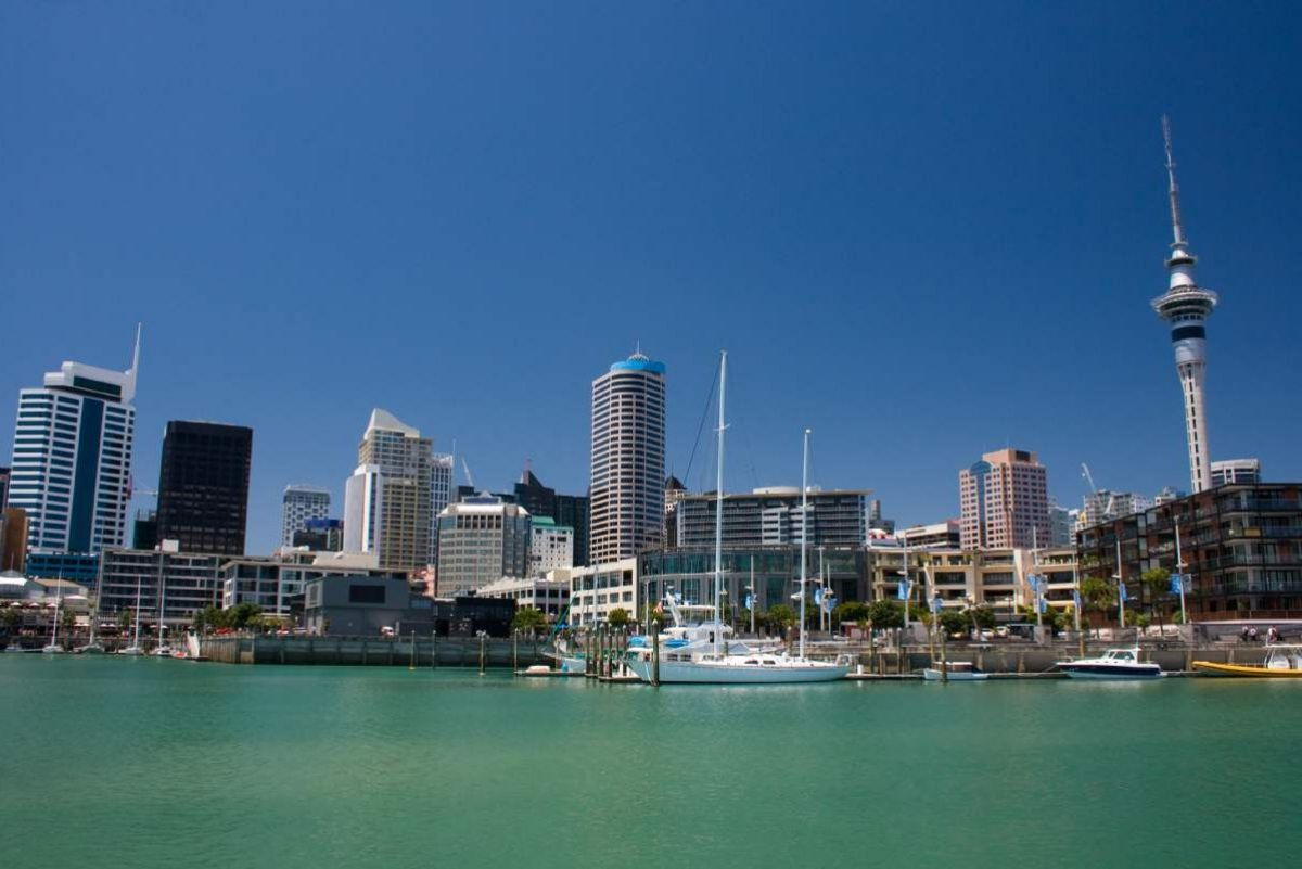 Auckland Highlights and Cruise