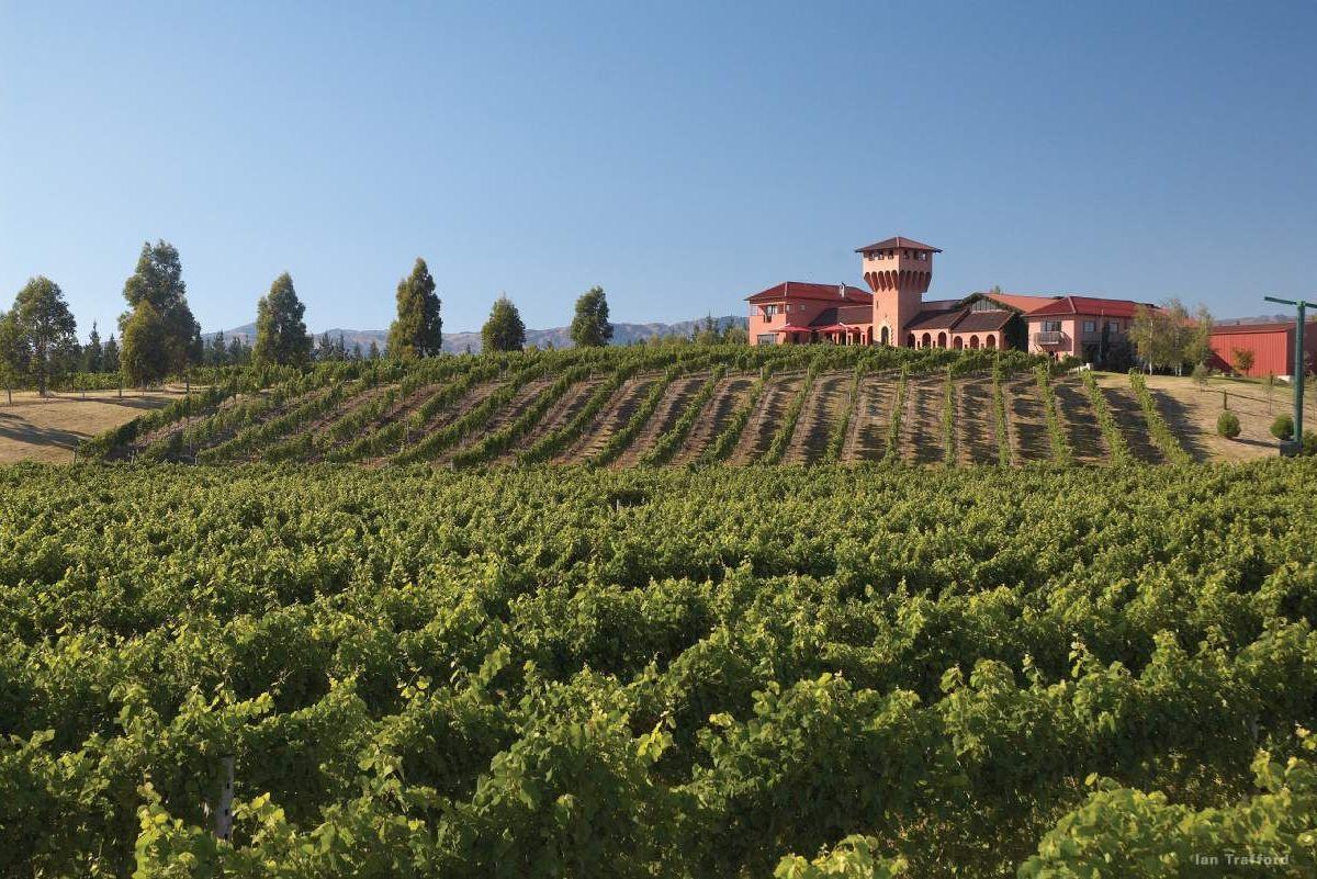 Wine Tour New Zealand South Island