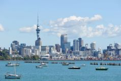 Auckland City Sights