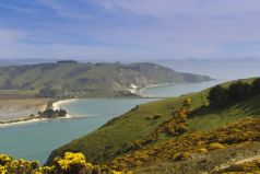 The Otago Peninsula Experience