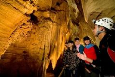 Waitomo Caves Tour